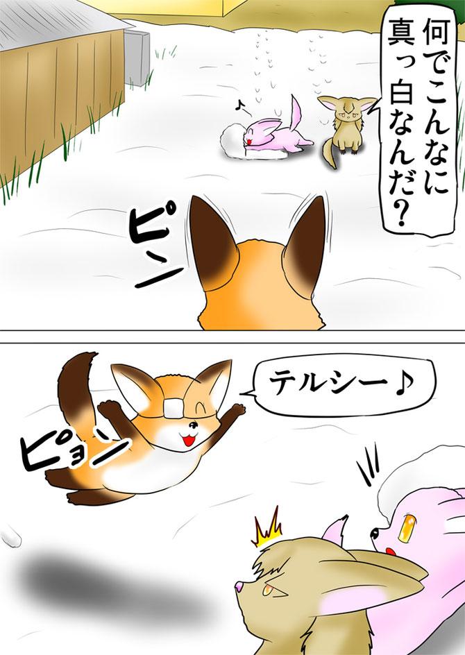 雪遊びするフェネックに飛びかかる狐を睨むフクロギツネ