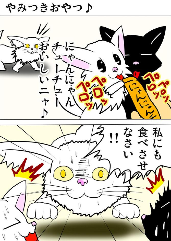 猫の餌をなめる白猫と黒猫にむかって突進してくるメインクーン猫