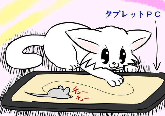 ネズミ捕まえアプリで遊ぶマンチカン猫