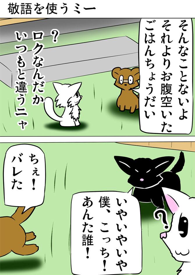 タヌキと対面する白猫