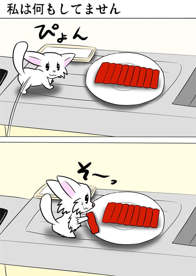 台所の皿にもられた鮪の刺身をそっと取ろうとする白猫