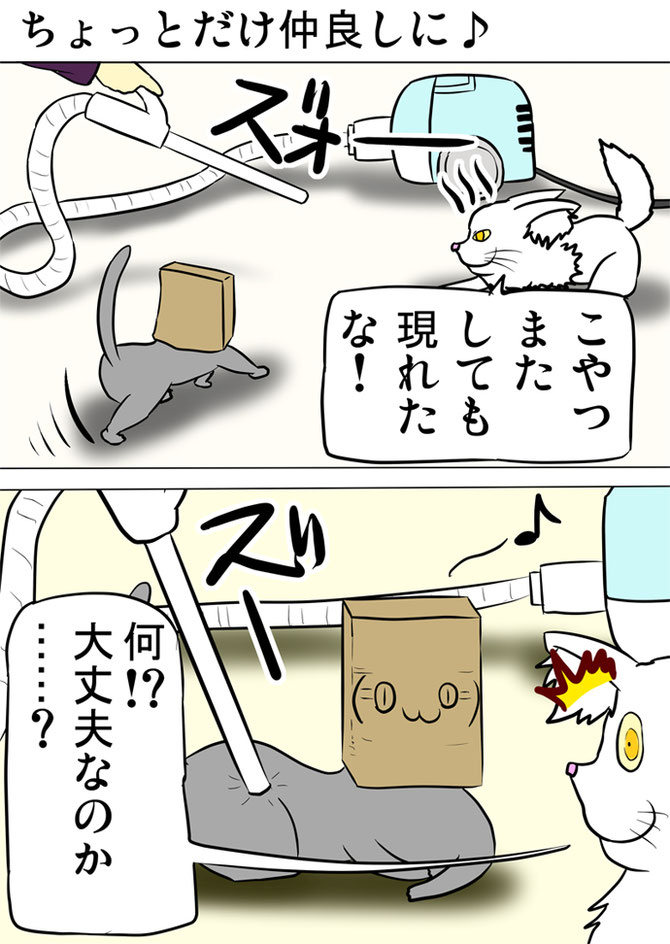 掃除機で吸われる紙袋を被った猫