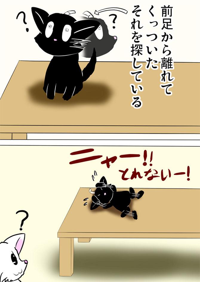 頭についたテープを取ろうとして暴れる黒猫