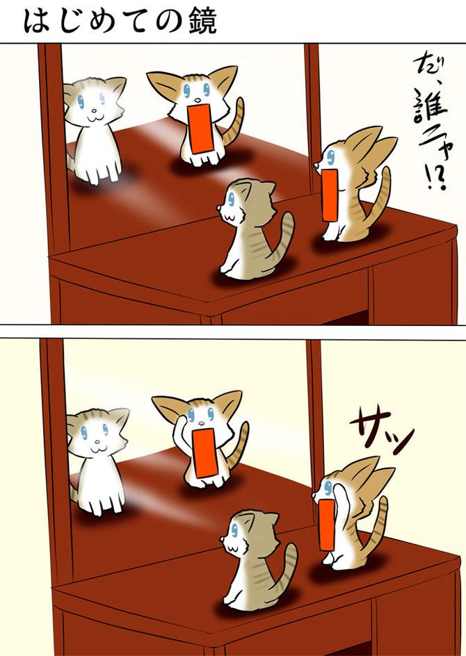 鏡の前の子猫たち
