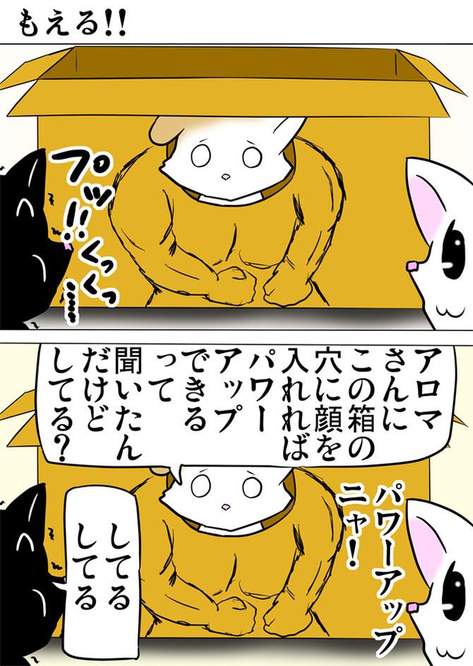 筋肉質の体が描かれたダンボール箱の穴に顔をいれるスコティッシュフォールド猫