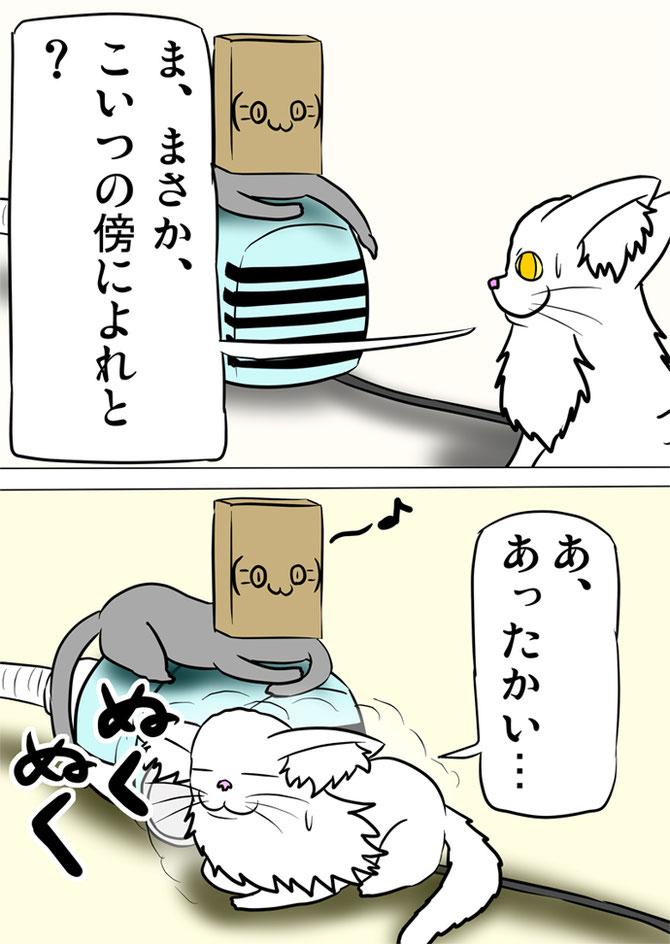 掃除機の傍によって温まるメインクーン猫