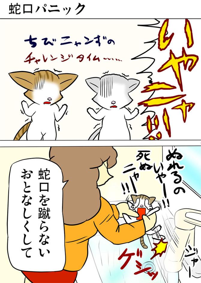 洗面所で体を洗われようとしている子猫