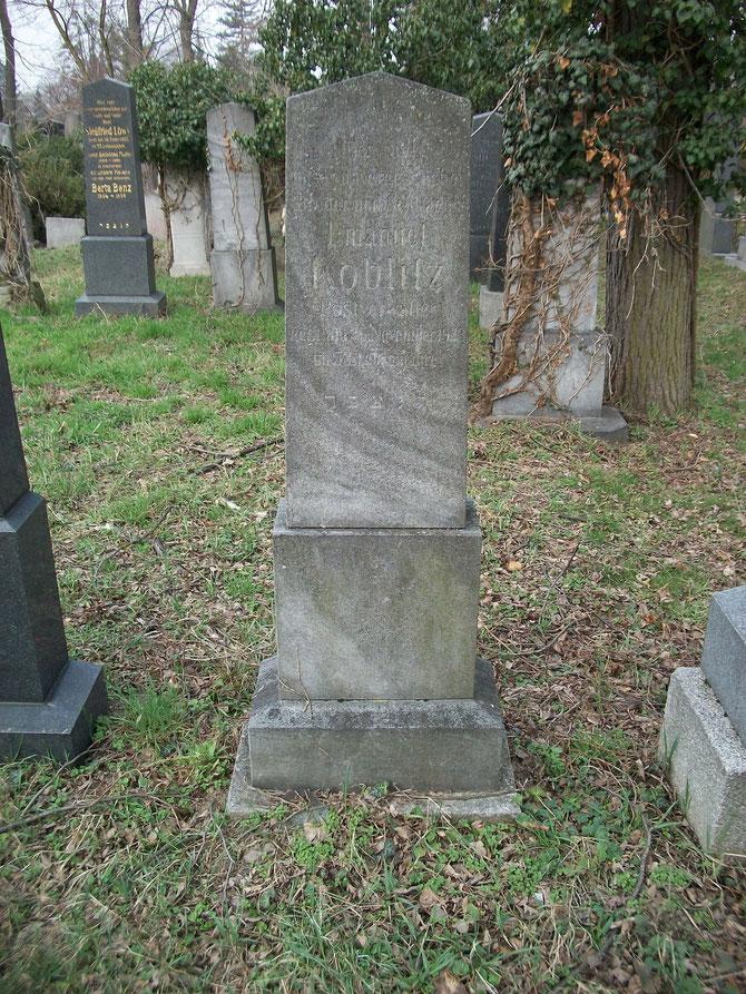 Grab von Emanuel Koblitz am Wiener Zentralfriedhof - alter, jüdischer Teil, Gruppe 10, Reihe 14, Nummer 2