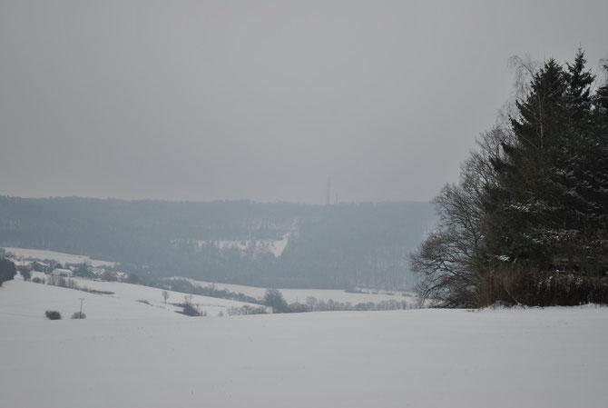 Blick zum Braunenberg
