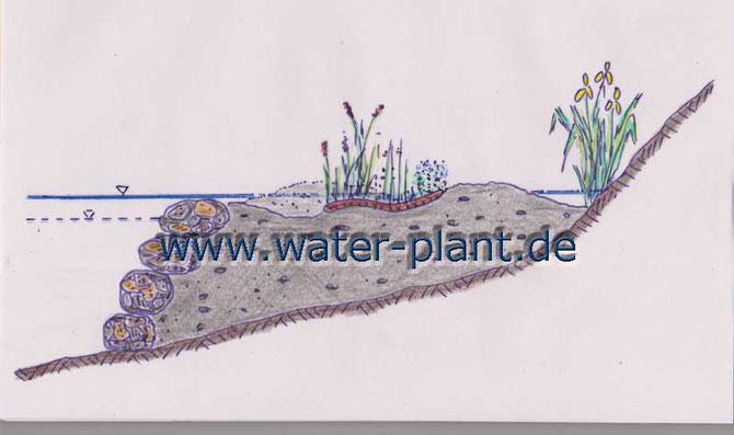 Schematischer Aufbau der neuen Flachwasserzone mit Steinwalzen und Röhrichtmatten