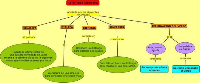 La sílaba métrica. Sinalefa, dialefa, diéresis y sinéresis.
