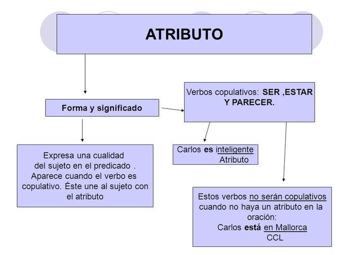 Mapa conceptual del atributo