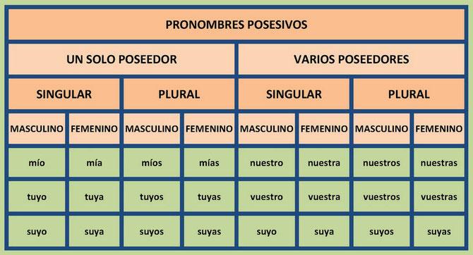 Cuadro con los pronombres posesivos