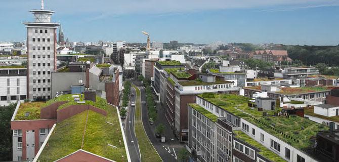 Vision grünes Stephaniviertel  ©MUST Städtebau
