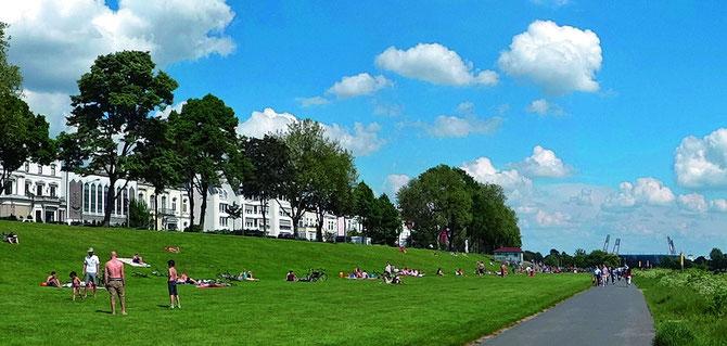 Intensiv genutzt: Der Osterdeich, eine der beliebtesten Grünflächen in Bremen (© Ingrid Krause / BTZ)