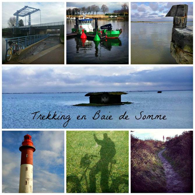 Rando de 20km pour découvrir la Baie de Somme autrement