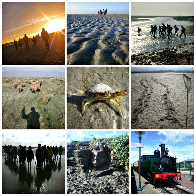 traversée de la baie de Somme avec maxim votre guide en Baie de Somme