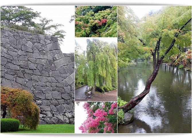 緑豊かな盛岡城跡の風景。すでに紅葉が始まっていました。