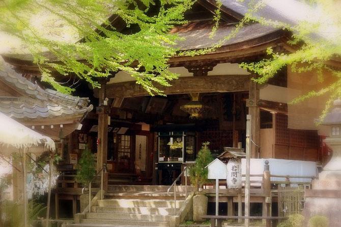 岩間寺の本堂。西国三十三所第十二番札所のお寺です。