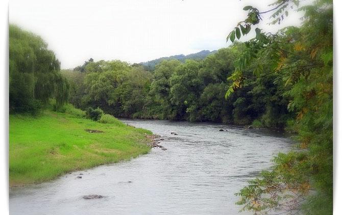 「やわらかに柳あおめる 北上の岸辺目に見ゆ 泣けとごとくに」と歌われた北上川の流れ。
