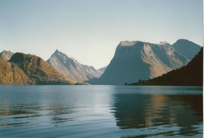 Fjord in Norwegen - sauberes Wasser mit kräftigen Gezeitenströmungen