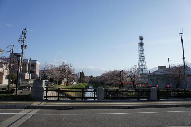 高田本町を抜け、青田川を横切ります。公園までもう少しです