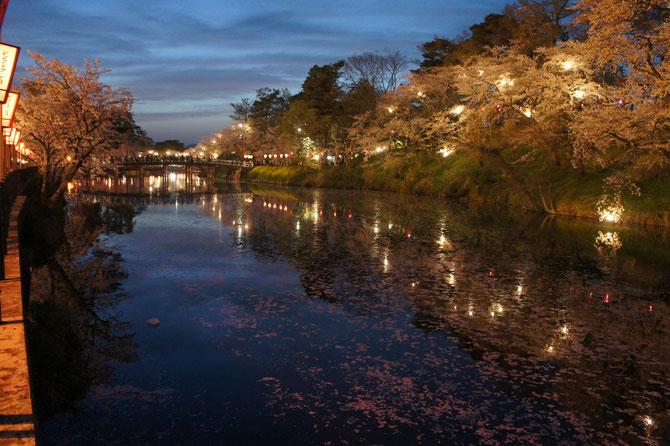 極楽橋近くの内堀。水面に浮かぶ桜の花びらにも歴史情緒が漂う