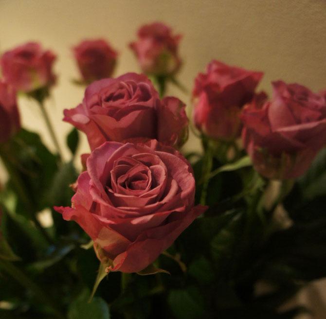 管理人から当ブログに訪れて下さる皆さまに花のプレゼント。いつもありがとうございます