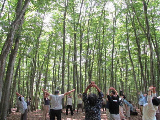 『美人林』と『光のシャワー』に包まれて。日ごろ味わえない至福の時。