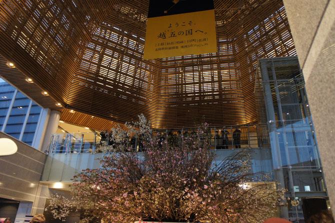 「もてなしドーム」では、プラントハンター西畠清順さんが手がけた桜がお出迎え