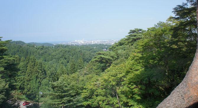 今日の春日山・見晴らし屋さんの2階からの景色。夏空と緑に包まれた「うみまち」。ガクト謙信公、間もなく出陣のとき