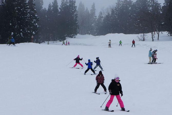 妙高の大自然を満喫するスキーヤー。転んだ数だけ、思い出が深まっていきます