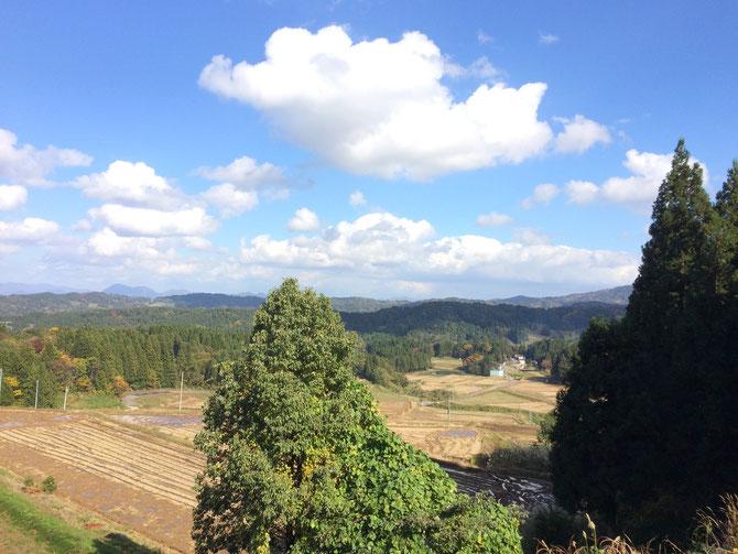 清里区、秋の棚田の風景。わた菓子のような雲が、手に届きそうです