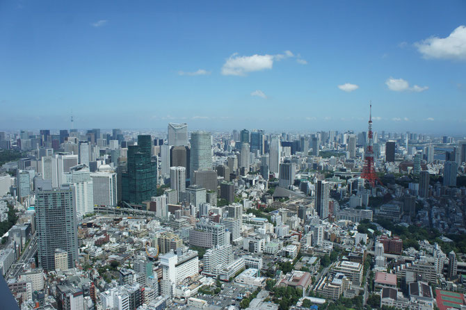 台風一過の「TOKYO」のまち。「自分らしさ」を忘れず、地元の発展に尽くしたいと心に誓いました