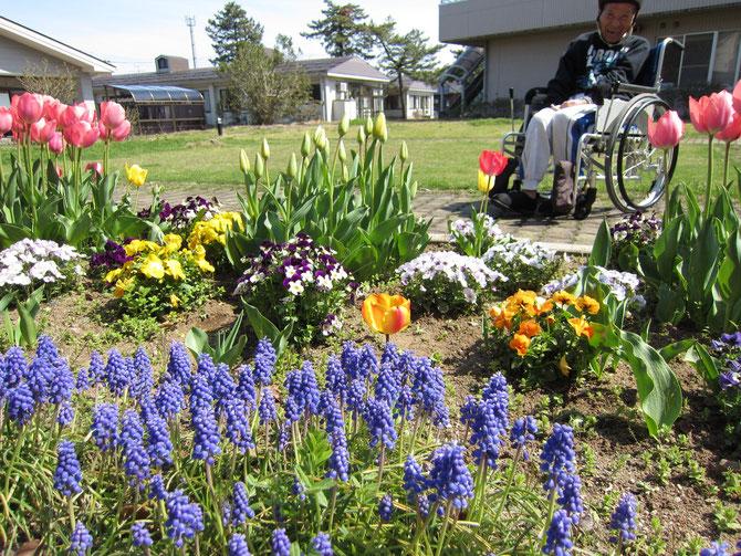 春爛漫の中庭。お日さまと咲き誇る花の競演に、心が躍る、体が動く!