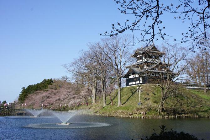 ようやくたどり着いた「高田城三重櫓」。一分咲きですが、圧倒的な存在感を醸し出していました。心が躍る、上越の春。