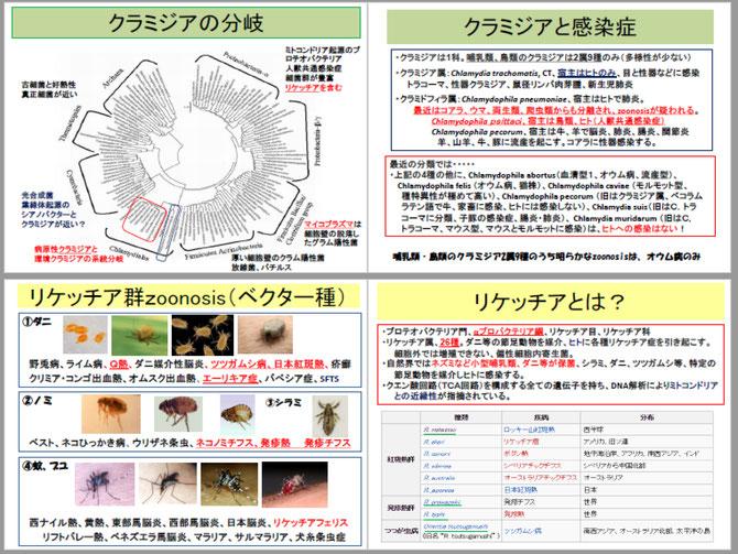 人獣共通感染症2 - animalcrisis...
