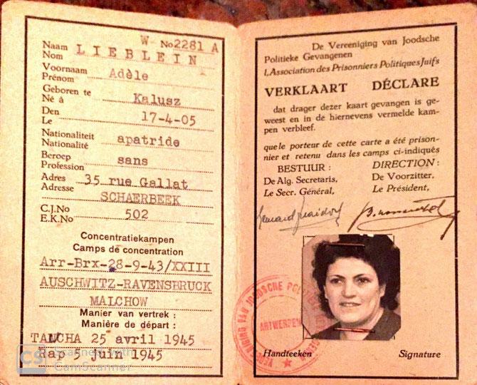Ausweis für jüdische politische Gefangene von Adele Verständig (1947)