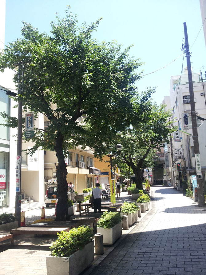 お灸 教室 横浜