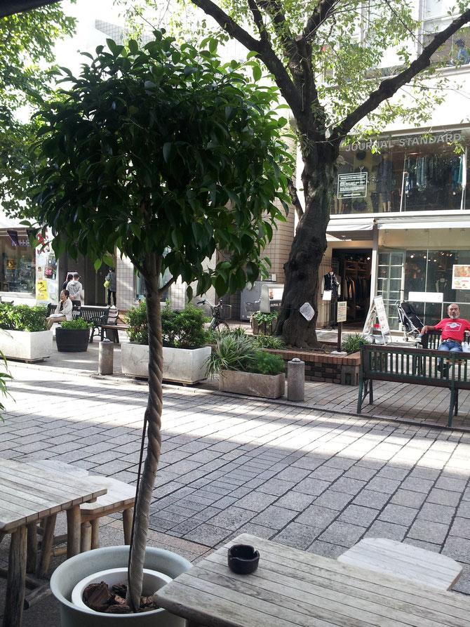 自由が丘駅南口のカフェ