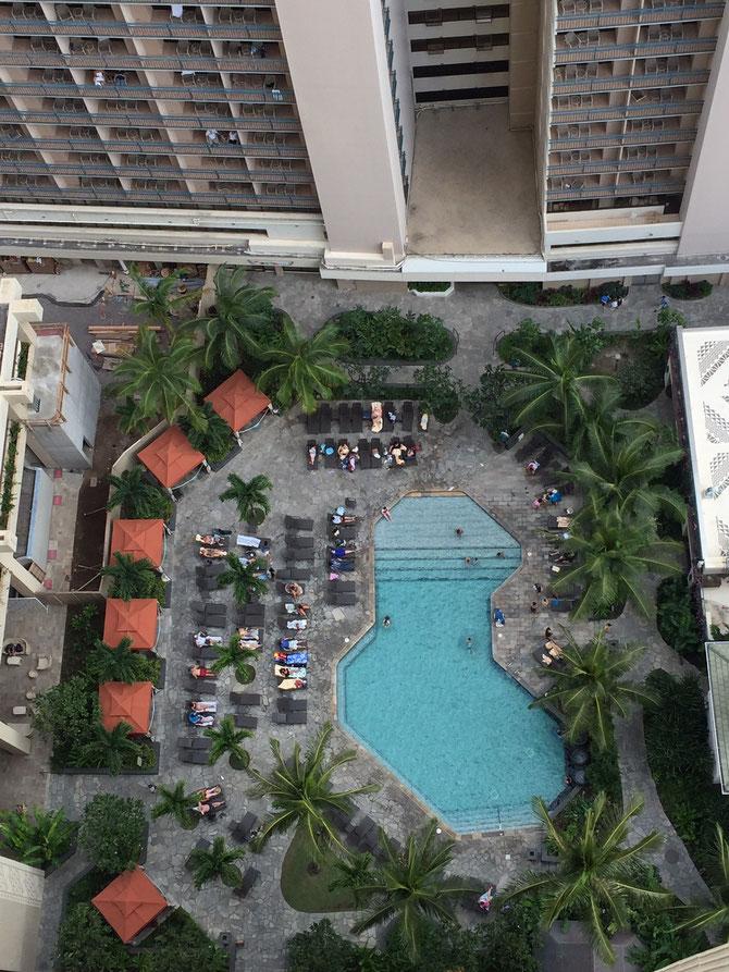 ハワイ ヒルトン プール
