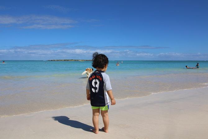ハワイ ビーチ ワイキキ ラニカイ