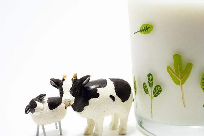 デイリーフリーとは、乳製品を使わない食品、食事療法のこと
