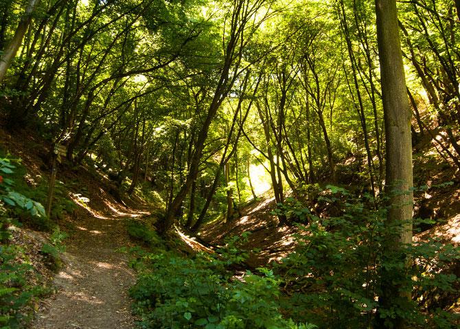 Den Weilerbach entlang.