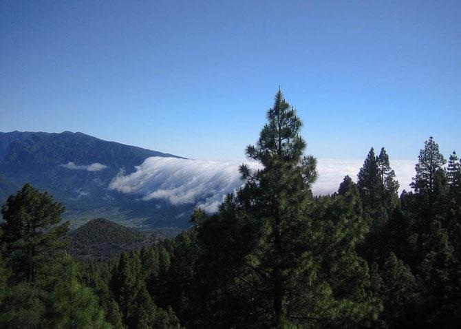 Nordost-Passatwolken über der Cumbre Nueva