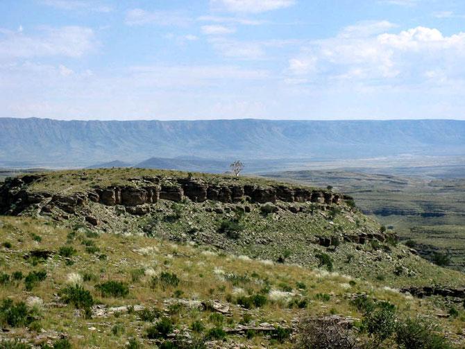Wanderung über das steinreiche Gelände der Zebra River Lodge. Ein einsamer Köcherbaum ist das Ziel