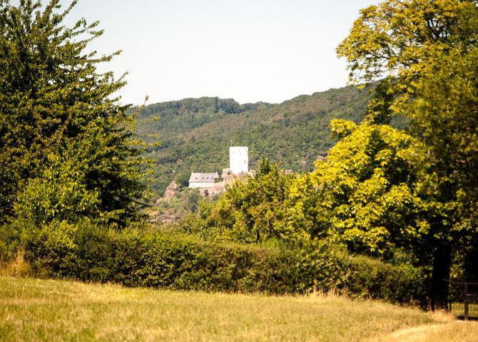 """Und wieder """"schaut"""" Burg Sterrenberg um die Ecke."""