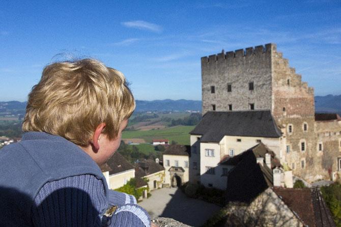 Blick auf den Palas, den äußeren Burghof und die Umgebung