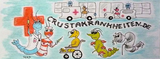 Crusta Online Hospital - Garnelenkrankheiten