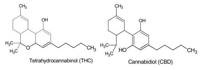 THC marihuana